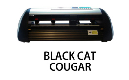 Black Cat Cougar
